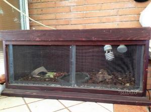 Teca per Rettili, iguane e tartarughe terresti