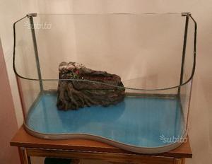 Isolotto per tartarughe galleggiante e posot class for Tartarughe per acquario