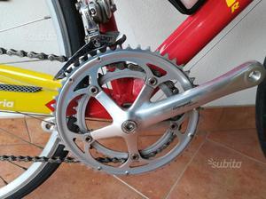 Bici corsa Marin Campagnolo