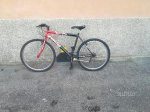 Bicicletta da donna - motain bike