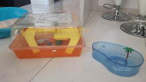 Vasche per tartarughe posot class for Vasche da interrare per tartarughe