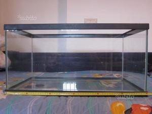Isolotto per tartarughe galleggiante e posot class for Vaschetta tartarughe prezzo