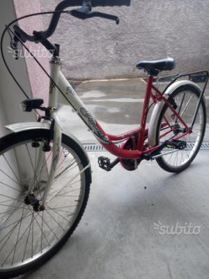 Bici donna 24
