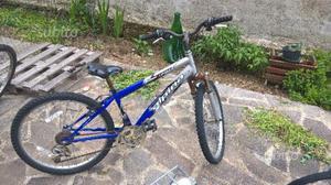 Mountain bike marca alpina misura 24