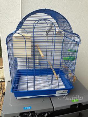 Coppia di cocorite con gabbia e nido
