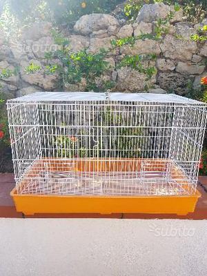 Gabbia per canarini e piccoli volatili