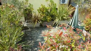 Vasi da esterno in cemento bianco verona posot class for Piante decorative