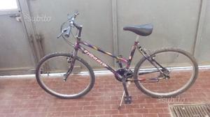 Montain bike usata