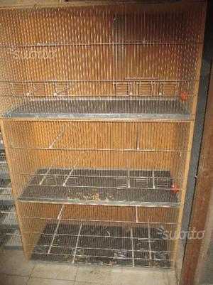 Gabbia per canarini 100X160