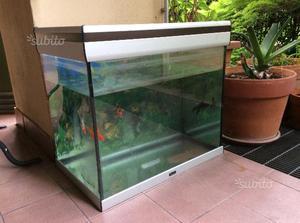 Vasca pesci acquario posot class for Acquario grande usato