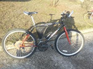 biciclette henry hogan
