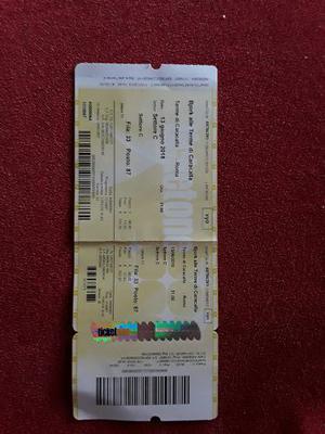Vendo un biglietto concerto Bjork Terme di Caracalla