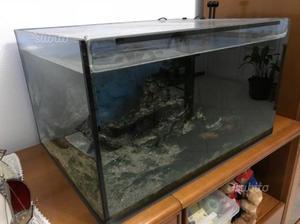 Cerco acquario altezza max 35 cm posot class for Depuratore acqua tartarughe