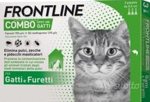 Frontline combo spot on gatto