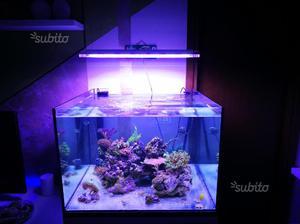 Lampada acquario gnc