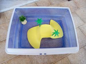 Vaschetta in plastica per tartarughe posot class for Vaschetta tartarughe prezzo