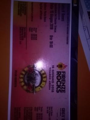1 biglietto concerto Guns'nRoses