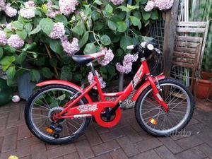 "Bicicletta bambino ruota 20"""