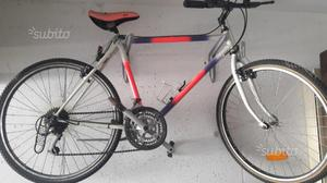 Due mountain bike