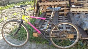 Bicicletta mountain bike ragazzo/uomo