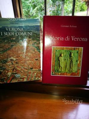 Storia di Verona_ Verona e i suoi comuni