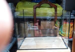 Acquario Vasca in vetro Extra Chiaro