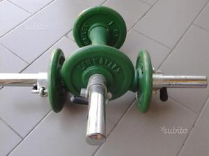 Manubri con pesi Lineaflex