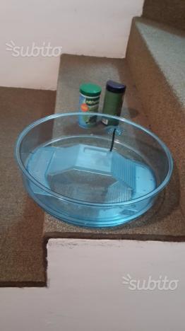 Acquario tartarughe vasca contenitore con posot class for Vaschetta tartarughe prezzo
