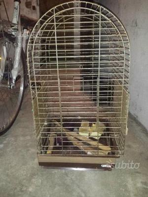 Gabbia o trespolo per pappagalli
