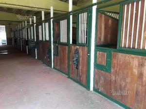 Box cavalli ditta rinco usati posot class for Box per cavalli usati in vendita