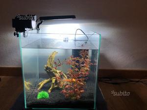 Dosatore elettrico mangime pesci posot class for Neon pesci prezzo