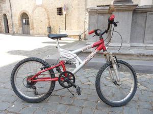 Mountain Bike 20'' (prezzo trattabile)