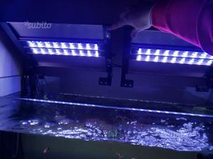 Plafoniere Per Acquario Marino A Led : Plafoniere per acquario marino: lotto 2 marino