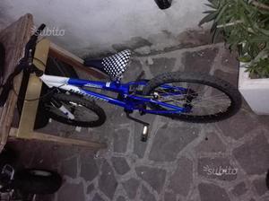 2 bici più monopattino
