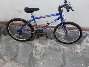 Mountain Bike ATALA ruote  rapporti