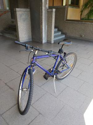 """Bicicletta uomo 26"""" PRONTA PER ANDARE + catena e luchetto"""