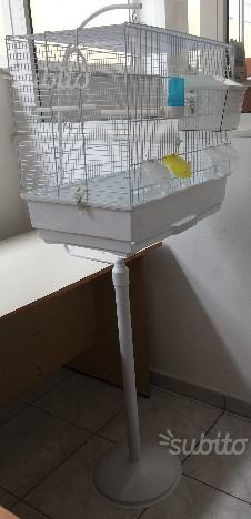 Gabbia/Voliera per uccelli con supporto + Regalo