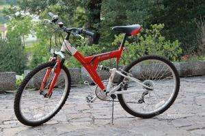 Mountain Bike e bici passeggio