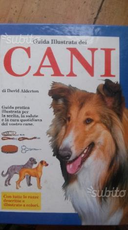 Guida illustrata dei cani