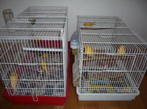Canarini -  -Gabbie -per uccelli - varie -