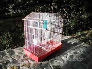 Gabbia per uccelli