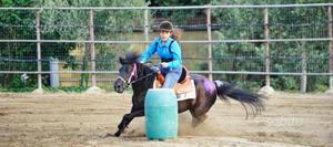Pony e doppiopony