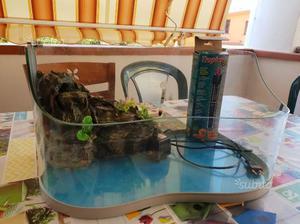 Tartarughiera completa di pompa posot class for Tartarughiera acqua