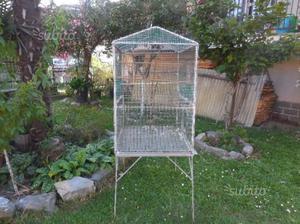 Voleria gabbia per uccelli vari
