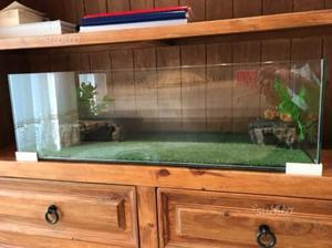Casetta rifugio tartarughe posot class for Acquario esterno per tartarughe