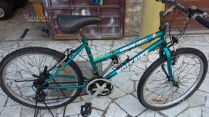 Bici Mountain bike n.24