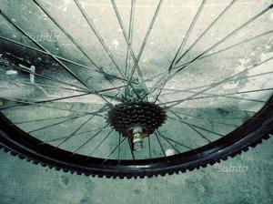 Coppia di ruote complete condizioni eccellenti
