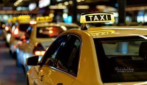 Libro manuale patente scuola guida taxi noleggio