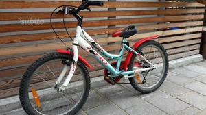 """Bicicletta bambino o bambina 20"""""""