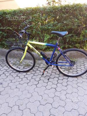 Mountain bike,effedi bikes